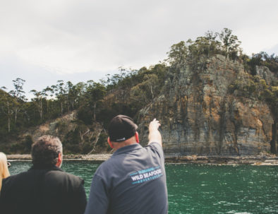 Tour guide and guests spotting Alum sea cliffs